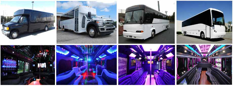 Baltimore Birthday Party buses