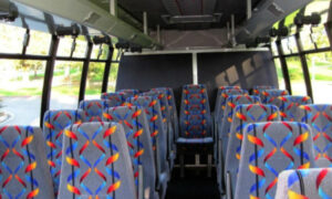 20 person mini bus rental Lochearn