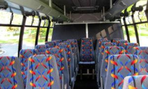20 person mini bus rental Rosedale