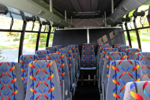 20 person mini bus rental Rosedale